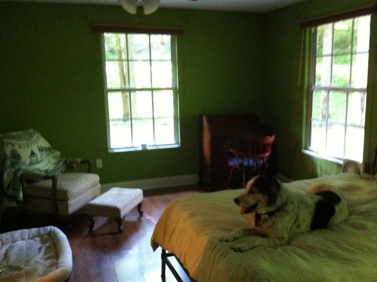 Oreo in the cabin.