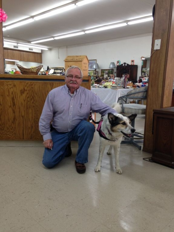 Oreo with the mayor of La Follette, TN at the Habitat for Humanity ReStore.